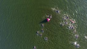 Aerial top down of sportsmen crossing river during triathlon swimming stage. Athletes take part in long distance competition. healthy lifestyle, extreme sports stock video
