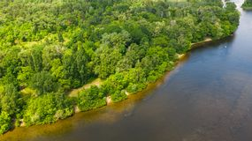 Aerial top down view from drone of forest on river coastline. Natural green foliage background stock photos