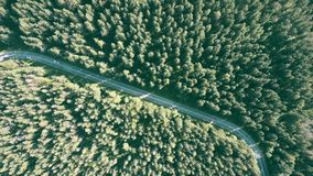Fir tree forest and the car road. Aerial top down view of a fir tree forest and the European car road stock video footage