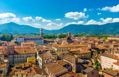 Aerial top panoramic view of historical centre medieval town Lucca with old buildings, typical orange terracotta tiled roofs and m royalty free stock photos