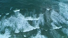 Aerial top shot of the sandy beach that is washed by light waves in Sri Lanka. Lright waves foam and wash the sandy beach at the resort in Sri Lanka stock footage