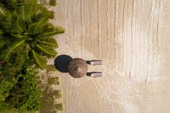 Aerial top view on the beach, umbrella and sand. Concept vacation stock photos