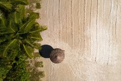 Aerial top view on the beach, umbrella and sand. On Seychelles stock images
