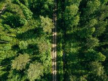 Aerial top view of a country road through a fir forest in summer rural Finland Stock Image