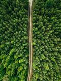 Aerial top view of a country road through a fir forest in summer rural Finland Royalty Free Stock Photos