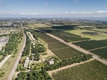 Aerial top view from drone to vineyard. With grape. Shot in Ukraine wine green field agriculture beautiful farm farming land nature plant rural summer stock photos