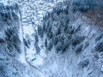 Aerial top view of forest and detached houses in winter stock photo