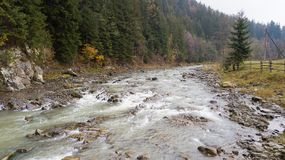 Aerial top view of a mountain river in the Carpathian Mountains Royalty Free Stock Photo
