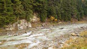 Aerial top view of a mountain river in the Carpathian Mountains Royalty Free Stock Photography
