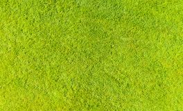 Free Aerial Top View Of Green Fresh Summer Lawn In Park. Natural Textured Background. Top View From Drone. Green Grass Pattern And Text Stock Image - 158580101