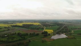 Aerial top view of rapeseed field during a beautiful sunny weather - Bright yellow color and moody sky - Roads in the. Aerial top view of rapeseed field during a stock video footage