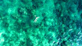 Aerial top view of woman snorkeling from above, girl snorkeler swimming in a clear tropical sea water with corals royalty free stock images