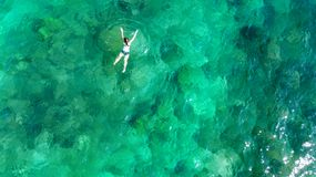 Aerial top view of woman snorkeling from above, girl snorkeler swimming in a clear tropical sea water with corals. During summer vacation in Thailand royalty free stock photos