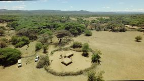 Aerial of a tribal hut in African rift valley with thorny fence in vast savannah stock video footage