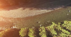 Mid air flight over fresh and clean mountain river at sunny summer morning. Vertical movement. Aerial UHD 4K view. Mid-air flight over fresh and clean mountain stock video