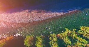 Mid air flight over fresh and clean mountain river at sunny summer morning. Vertical movement. Aerial UHD 4K view. Mid-air flight over fresh and clean mountain stock video footage