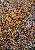 Aerial vertical view over protesters pro catalonia and catalan culture and language in the Spanish island of Mallorca. Royalty Free Stock Images