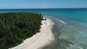Aerial video of beautiful tropical island beach. Saona, Dominican Republic. stock video