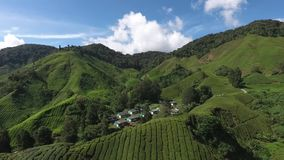 Aerial video of Cameron Highland