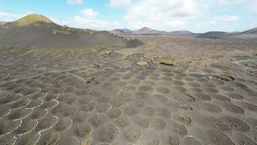 Aerial video footage of the La Geria vineyard on black volcanic soil in Lanzarote, Canary Islands stock video footage