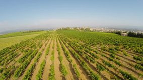 Aerial video of the old town Carcassonne from the vineyard. Southern France stock footage
