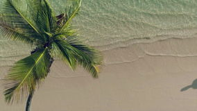 Aerial video of Palm tree, sandy island beach and clear turquoise sea water.  stock video footage