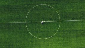 Aerial video, view from the top, in the stadium, in the center of a green football field, newlyweds in wedding attire. Dancing, spinning stock video footage