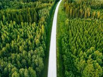 Aerial view from above of country road through the green summer forest in summer Finland. Drone photography Royalty Free Stock Photo