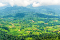 Aerial view of Agricultural area in mountain valley landscape in rain forest Royalty Free Stock Photo