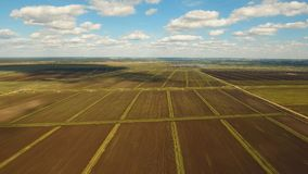 Aerial view of farmland. Stock Image