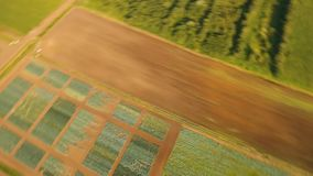 Aerial view of farmland. Aerial view of agricultural, cultivated fields. Agricultural landscape.Irrigated farmland. 4K, flying video, aerial footage stock footage
