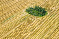 Aerial view of agricultural field Royalty Free Stock Photos