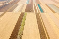 Aerial view of agricultural fields Autumn countryside royalty free stock photos