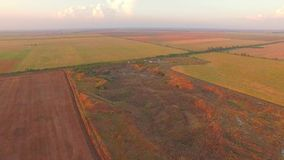 Aerial View Of Agricultural Fields stock video footage