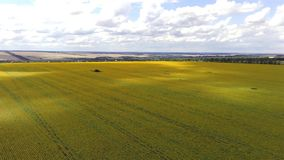 Aerial view of agricultural fields. Countryside, Agricultural Landscape stock video footage