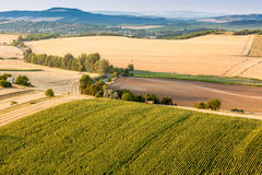 Aerial view of agricultural fields Stock Photos