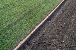 Aerial image of agricultural fields. Aerial view of agricultural green and brown fields in perspective, shoot from drone in winter time Stock Photo