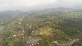 Agricultural land in indonesia. Aerial view agricultural land with crops in countryside. farmland with agricultural crops in rural areas bali, indonesia stock video