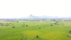 Aerial view of agricultural land in the Thailand Stock Photography