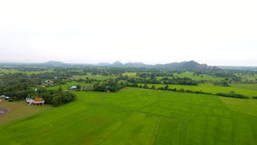 Aerial view of agricultural land in the Thailand Royalty Free Stock Images