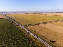 Aerial view of agriculture fields, meadow and road inside. Rural scene of countryside. Fresh green colors, look to above tree stock photos