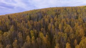 Aerial view of Alaska landscape stock video footage