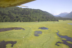 Aerial view of alaskan wilderness Stock Images