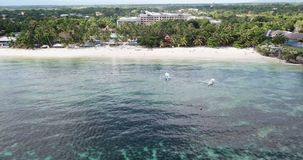 Aerial view Alona beach stock video