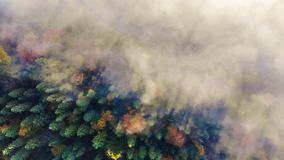 Aerial view of amazing landscape of Carpathian forests. Morning fog spreads over the river and envelopes the mountains. And forests. Magical and colorful autumn stock photo