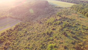 Aerial view: Amazing landscape with trees, hills, valley stock video footage