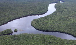Aerial view of Amazon River Royalty Free Stock Photo