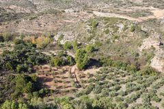 Aerial view of Andalucian landscape. Aerial view of arid sandy andalucian farmland with olive groves trees and rock in spain Stock Images