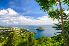 Aerial view on Aragonese castle through foliage, Ischia, Italy. Aerial view on Aragonese castle through green oliage, Ischia, Italy Stock Photos