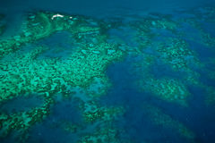 Aerial View of Arlington Reef, Australia Stock Photography